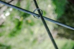 Ring_Foto von Dagmar Frensch