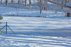 Winterlandschaft_Foto von Bärbel Liß