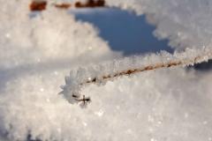 Winterzauber1_Foto von Sigrid Kasburg