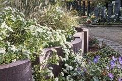 Garten-der-Ruhe-Beet-
