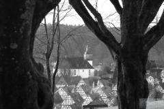 UD-Blick-durch-Bäume