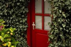 reddoor-ahcap-2