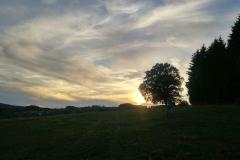 SK-Landschaft