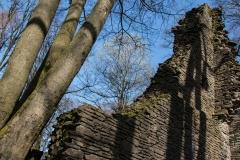 AHo-Burg-Neuenberg