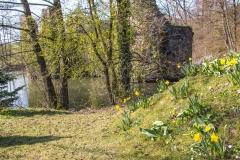 AHo-Ruine-Eibach-4
