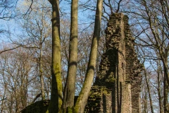 Aho-Burg-Neuenberg3