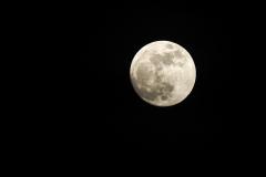 Mond-1304817