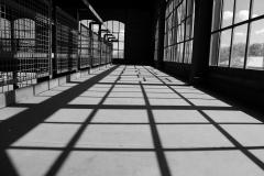 Licht-und-Schatten