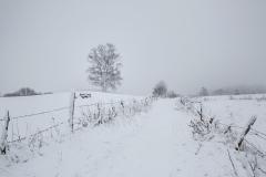 Schneefoto